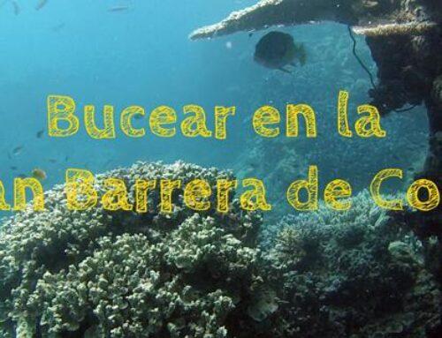 Bucear en la Gran Barrera de Coral